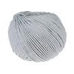 509.04 gris clair